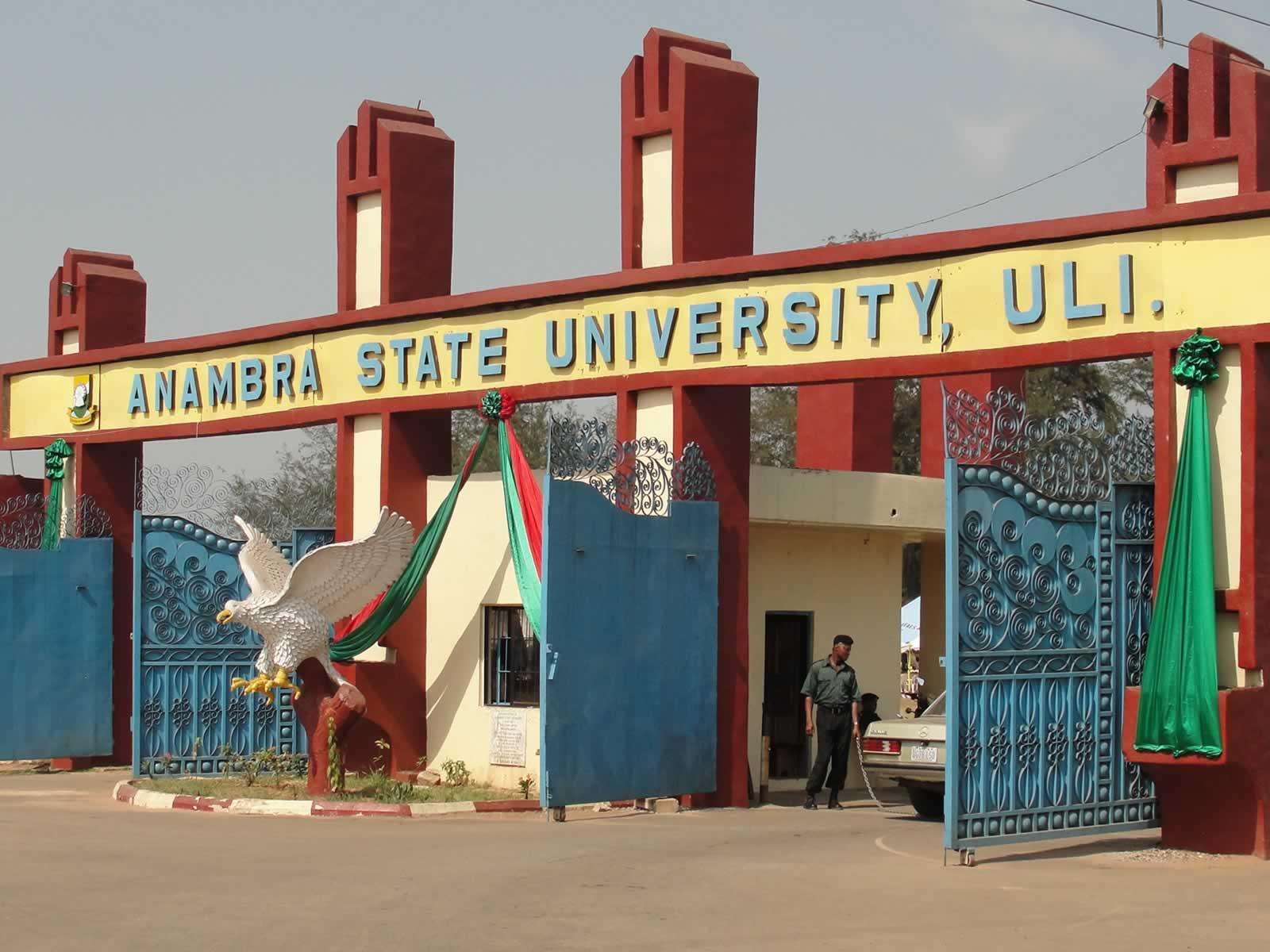 Chukwuemeka Odumegwu Ojukwu University Main Entrance. Photo: ANSU